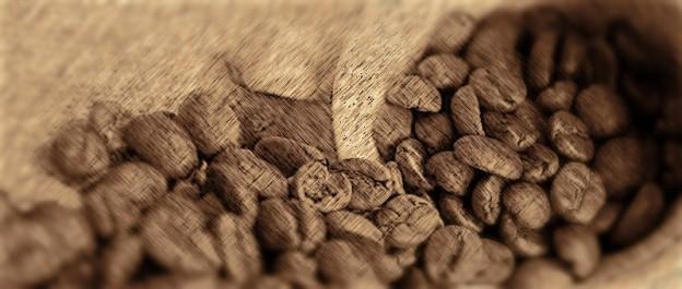Caféologue dilettante (L'Ayatollah du café), ami des bêtes (Puppy Bible), amateur d'art (Edward Hopper à New York), infatigable voyageur (guides Lonely Planet). Le traducteur curieux se forme en continu pour aborder de nombreux sujets de la vie courante.